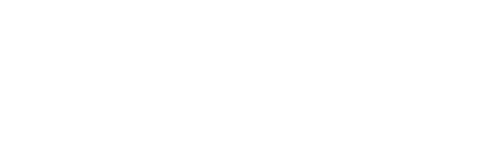 Wiredberry